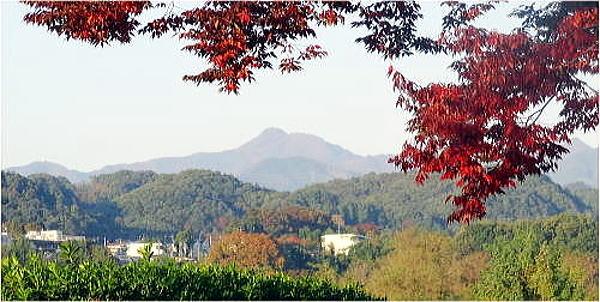 H25 泉州 qsl 600.jpg